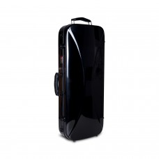 Double Violin Case Fiberglass