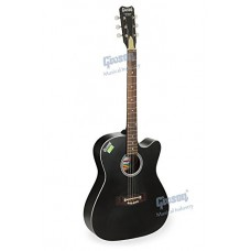 Givson Venus - 6-String Cutaway Right Hand Acoustic Guitar with Bag (Black) Free Shipping