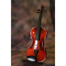 Violin 4/4,Professional's,With Rosin and Bow & Hard Case
